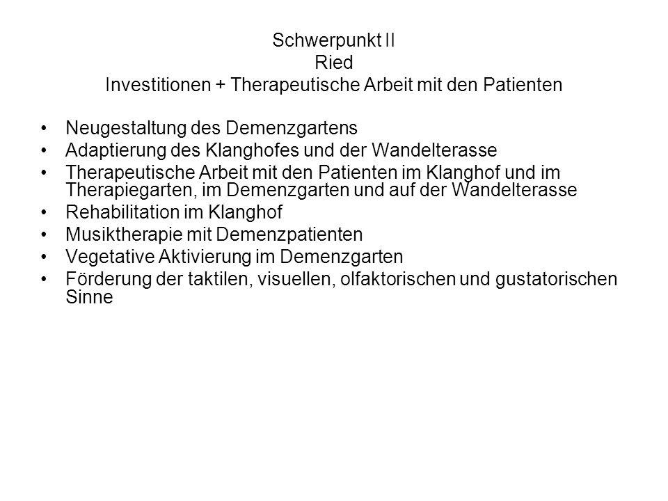 Schwerpunkt II Ried Investitionen + Therapeutische Arbeit mit den Patienten Neugestaltung des Demenzgartens Adaptierung des Klanghofes und der Wandelt