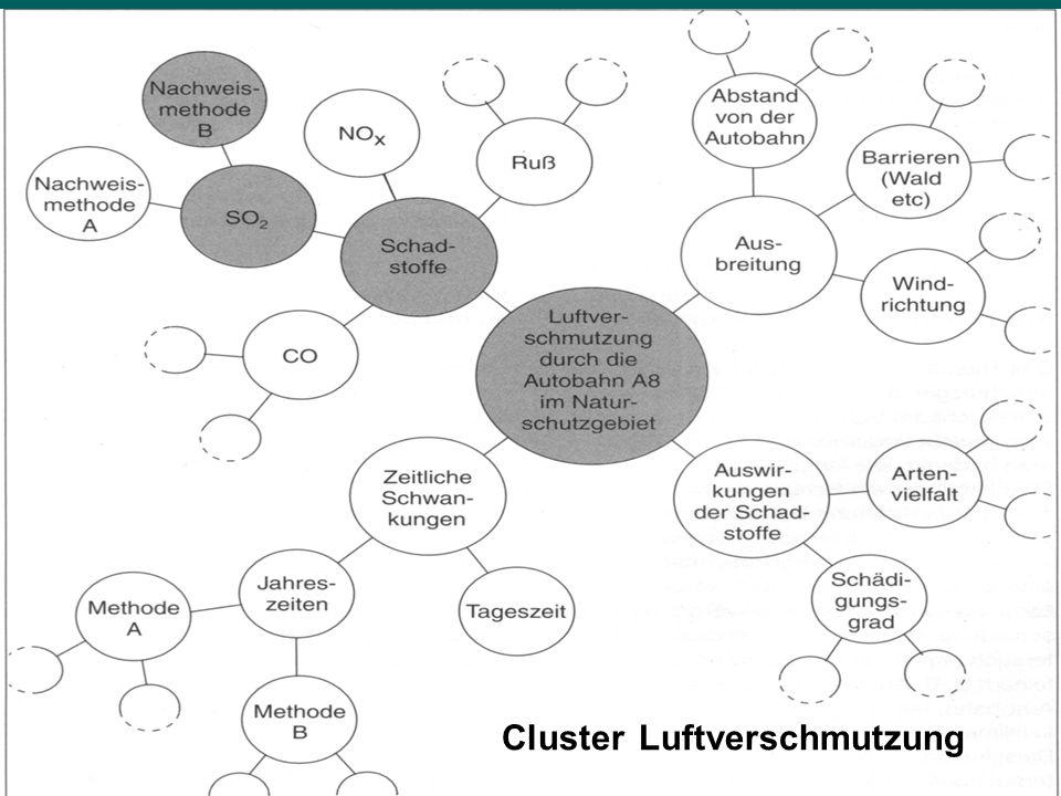 Cluster Luftverschmutzung