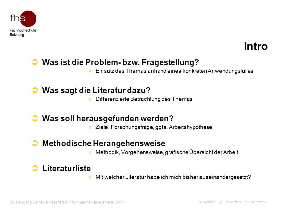 Copyright © Manfred Brandstätter Studiengang Betriebswirtschaft & Informationsmanagement (BWI) Intro Was ist die Problem- bzw. Fragestellung? »Einsatz