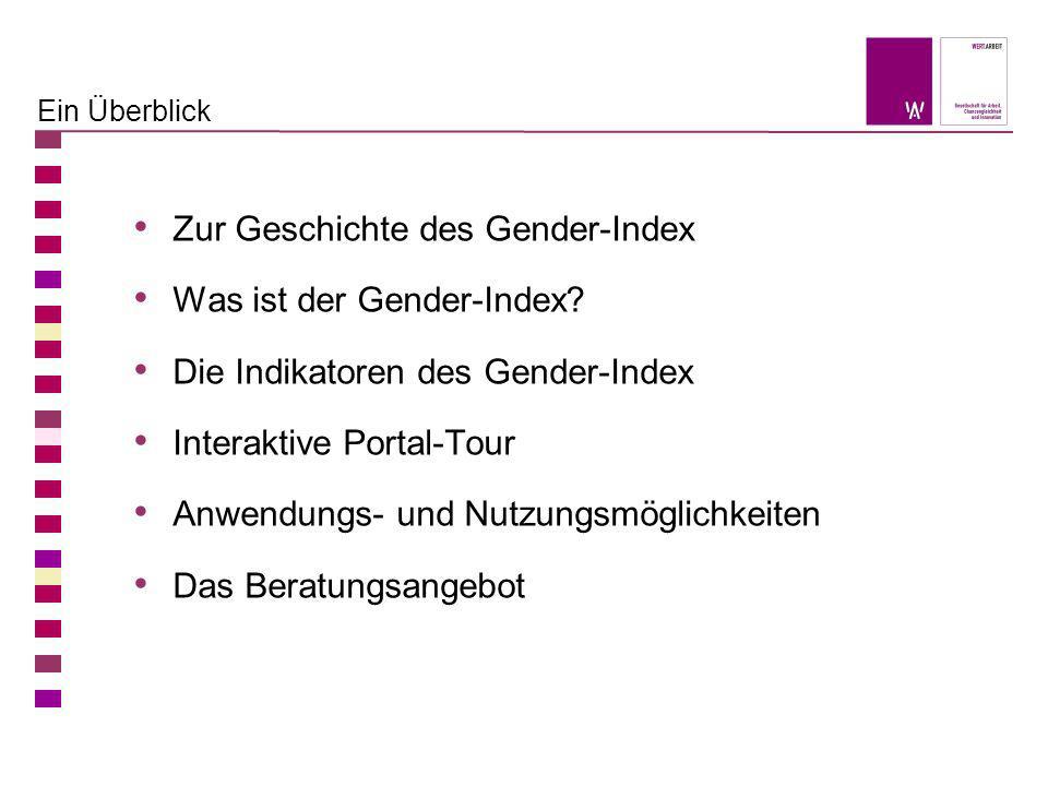Ein Überblick Zur Geschichte des Gender-Index Was ist der Gender-Index? Die Indikatoren des Gender-Index Interaktive Portal-Tour Anwendungs- und Nutzu