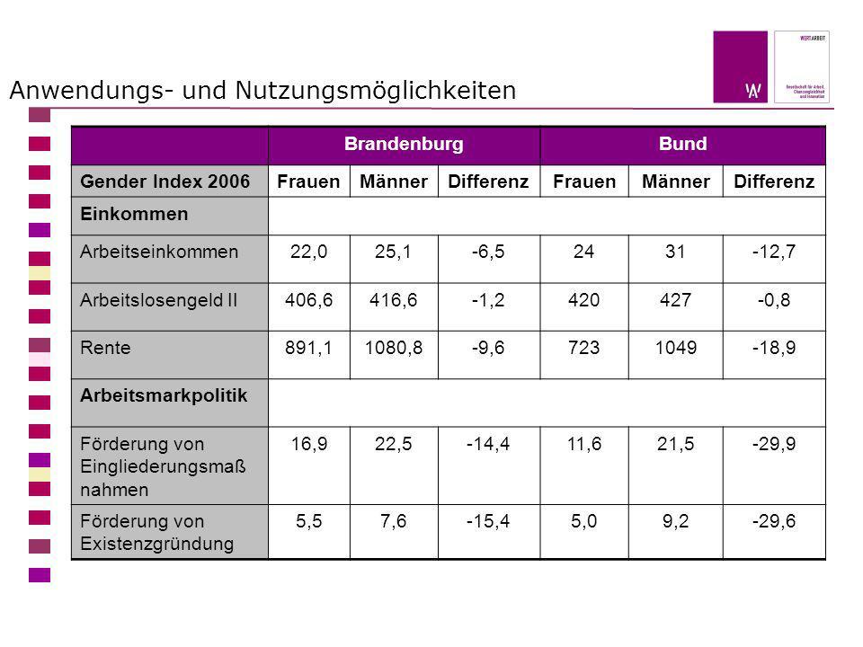 Anwendungs- und Nutzungsmöglichkeiten BrandenburgBund Gender Index 2006FrauenMännerDifferenzFrauenMännerDifferenz Einkommen Arbeitseinkommen22,025,1-6