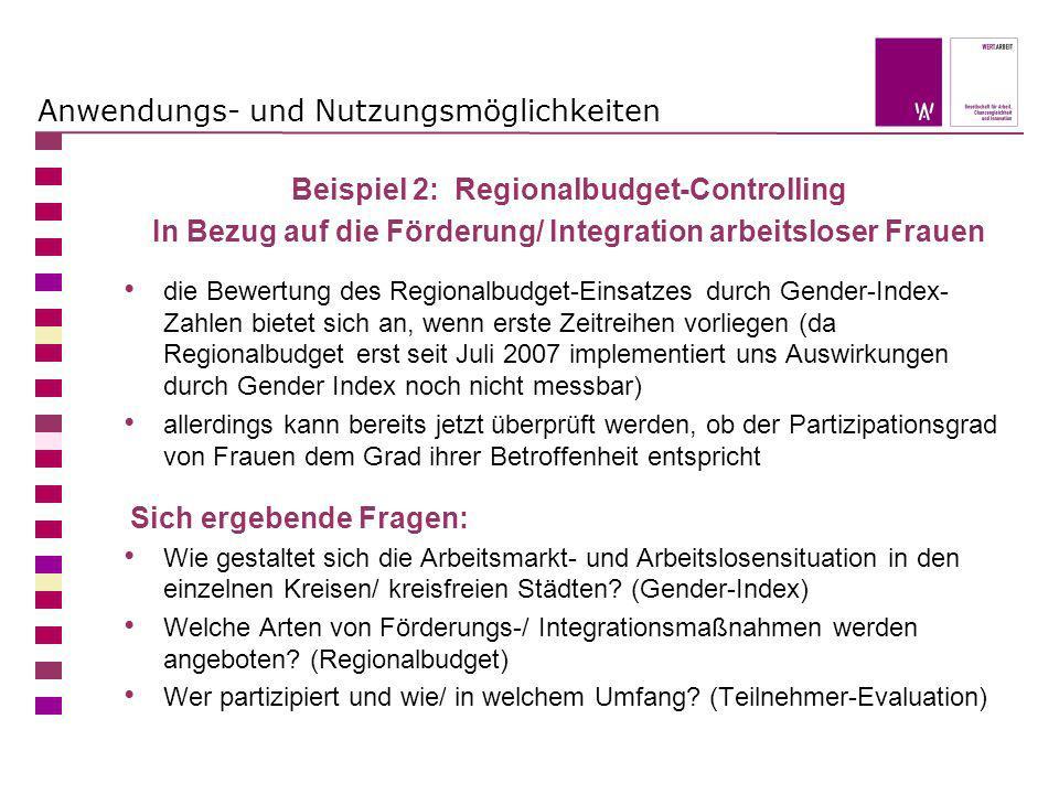 Anwendungs- und Nutzungsmöglichkeiten Beispiel 2: Regionalbudget-Controlling In Bezug auf die Förderung/ Integration arbeitsloser Frauen die Bewertung