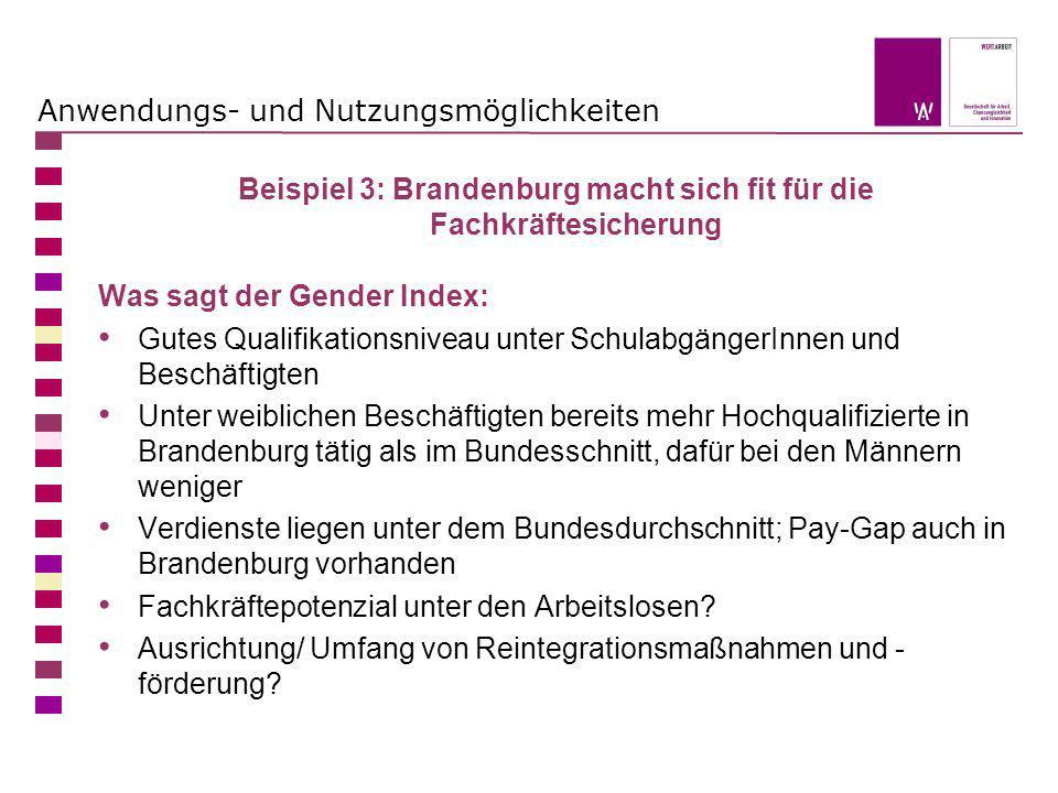 Anwendungs- und Nutzungsmöglichkeiten Beispiel 3: Brandenburg macht sich fit für die Fachkräftesicherung Was sagt der Gender Index: Gutes Qualifikatio