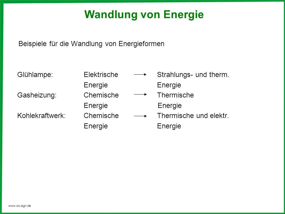 www.cc-agri.de fossile Energie (Steinkohle, Braunkohle, Torf, Erdgas, Erdöl) Biomasse Windenergie (atmosphärische Strömungen) Wasserkraft Sonnenenergie (nutzbare solare Energieeinstrahlung: Licht, Wärme) Kernenergie Gezeiten (Tidenhub) Geothermie (Erdwärme) Wellenkraft (Wellenkraftwerk) Meeresströmung (Meeresströmungskraftwerk) Als Primärenergie bezeichnet man die Energie, die mit den natürlich vorkommenden Energieformen oder Energieträgern zur Verfügung steht.