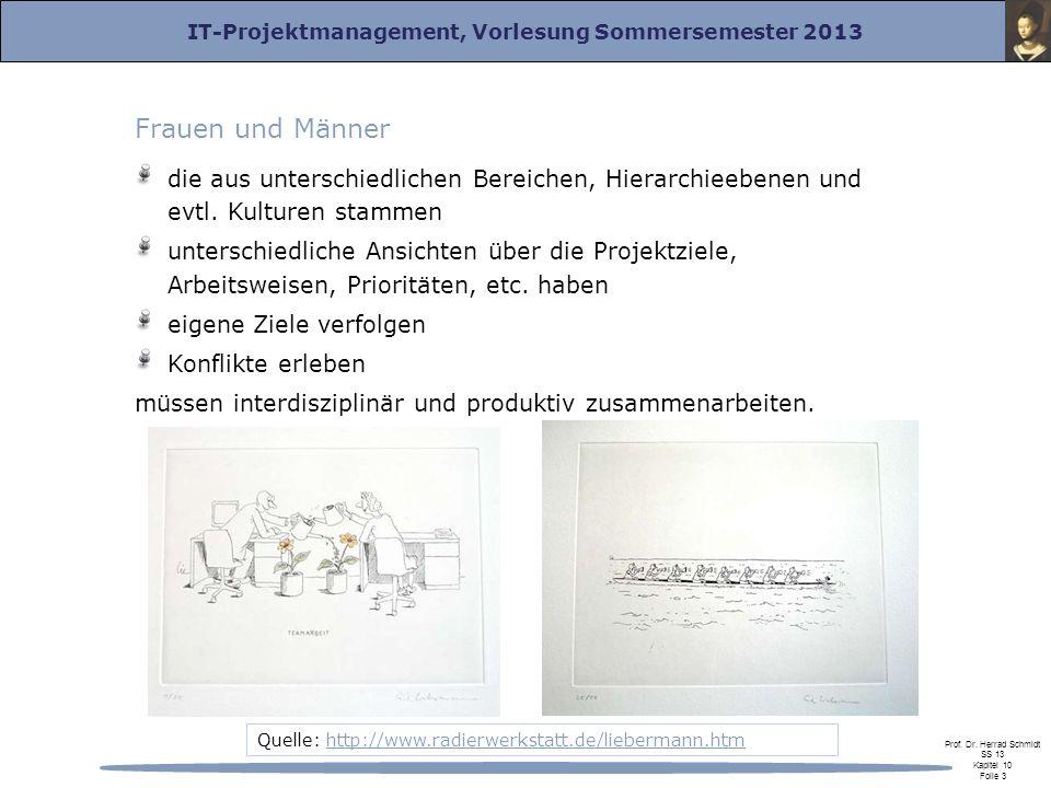IT-Projektmanagement, Vorlesung Sommersemester 2013 Prof. Dr. Herrad Schmidt SS 13 Kapitel 10 Folie 3 Frauen und Männer die aus unterschiedlichen Bere