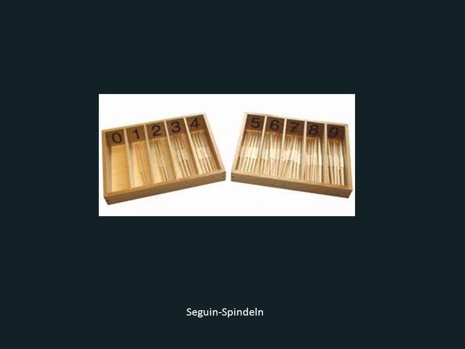 Seguin-Spindeln