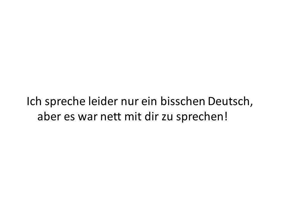 Ich spreche leider nur ein bisschen Deutsch, aber es war nett mit dir zu sprechen!