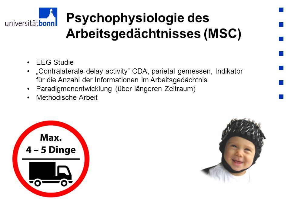 Psychophysiologie des Arbeitsgedächtnisses (MSC) EEG Studie Contralaterale delay activity CDA, parietal gemessen, Indikator für die Anzahl der Informa
