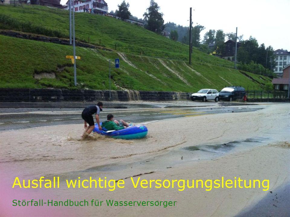 Störfall-Handbuch für Wasserversorger Ausfall wichtige Versorgungsleitung
