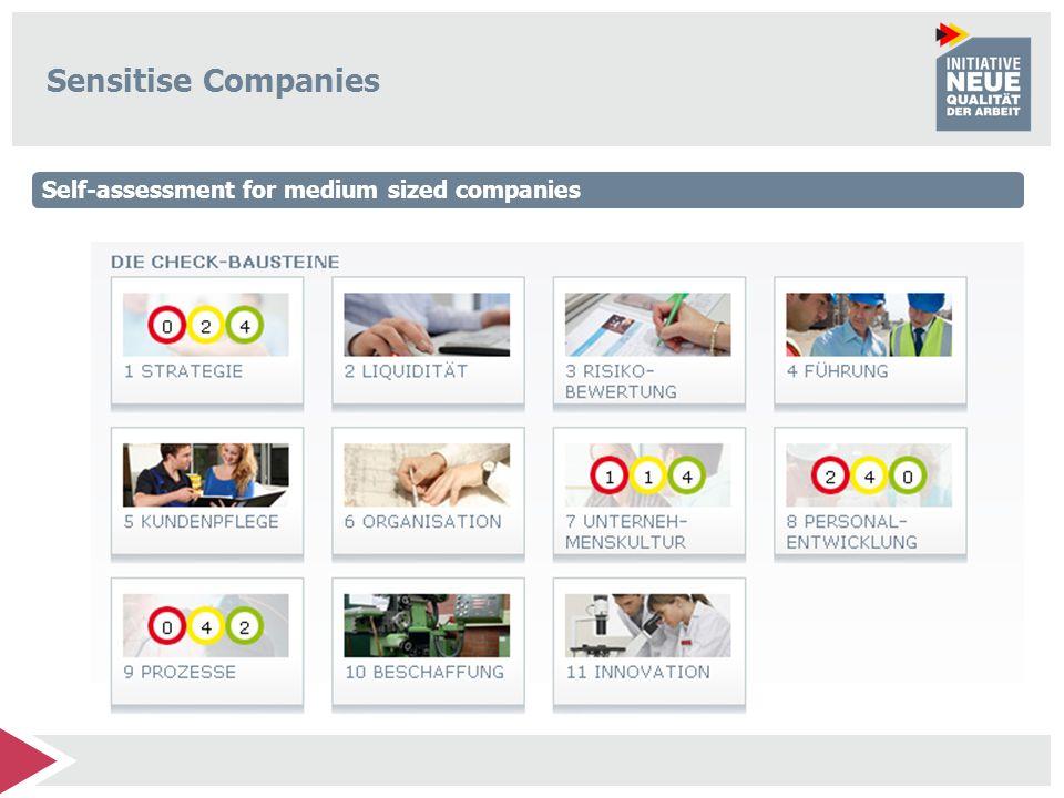 Sensitise Companies Self-assessment for medium sized companies