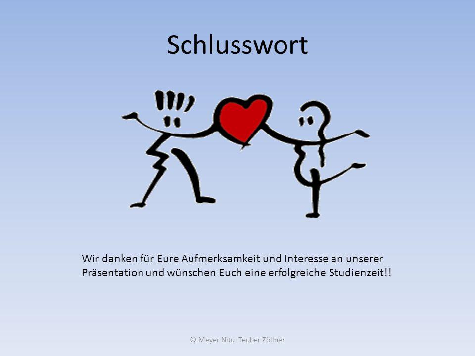 Schlusswort © Meyer Nitu Teuber Zöllner Wir danken für Eure Aufmerksamkeit und Interesse an unserer Präsentation und wünschen Euch eine erfolgreiche S
