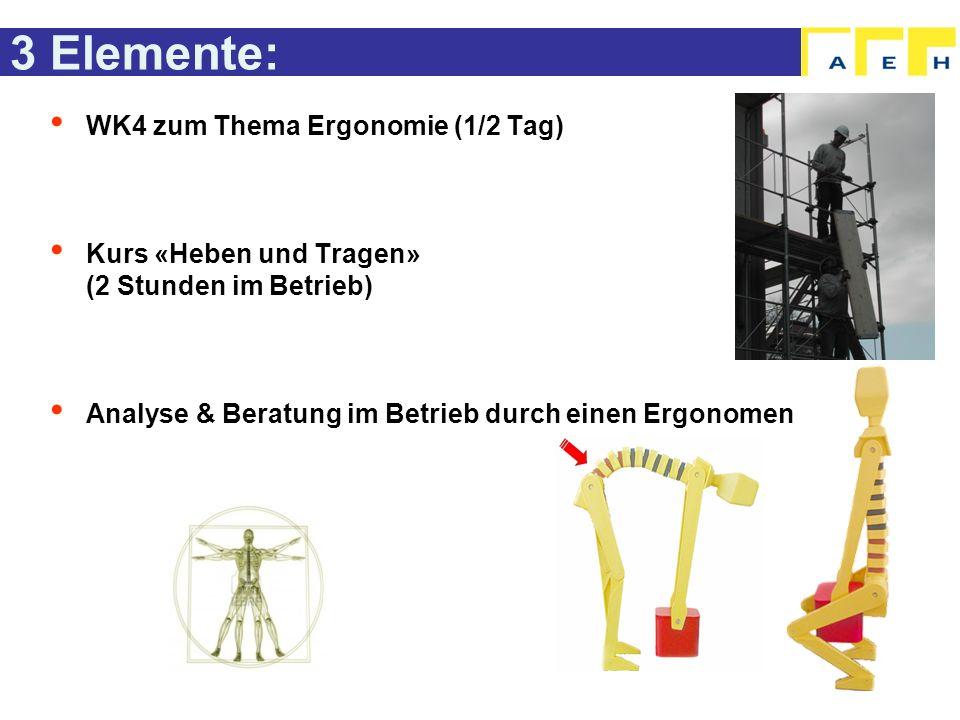 3 Elemente: WK4 zum Thema Ergonomie (1/2 Tag) Kurs «Heben und Tragen» (2 Stunden im Betrieb) Analyse & Beratung im Betrieb durch einen Ergonomen