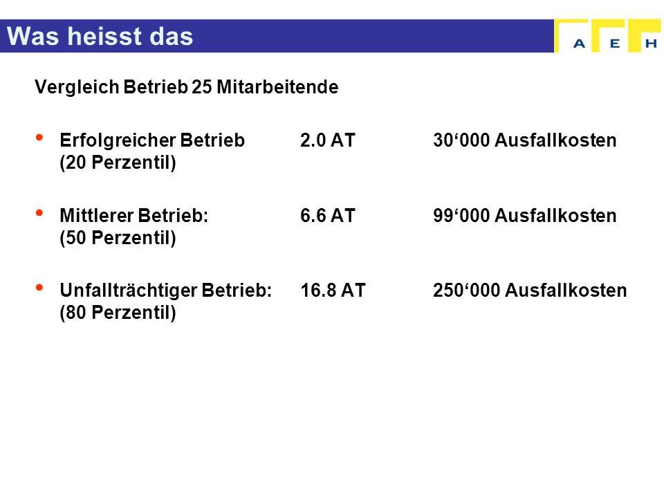 Was heisst das Vergleich Betrieb 25 Mitarbeitende Erfolgreicher Betrieb 2.0 AT 30000 Ausfallkosten (20 Perzentil) Mittlerer Betrieb:6.6 AT 99000 Ausfa