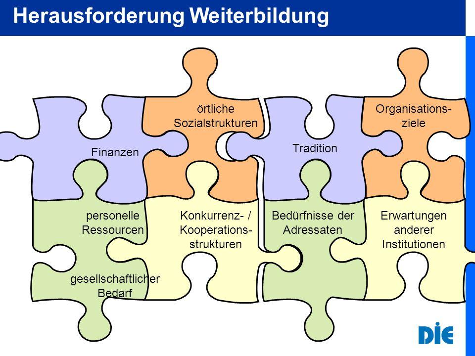 Finanzen Konkurrenz- / Kooperations- strukturen örtliche Sozialstrukturen personelle Ressourcen Erwartungen anderer Institutionen Tradition Organisations- ziele Bedürfnisse der Adressaten gesellschaftlicher Bedarf Herausforderung Weiterbildung