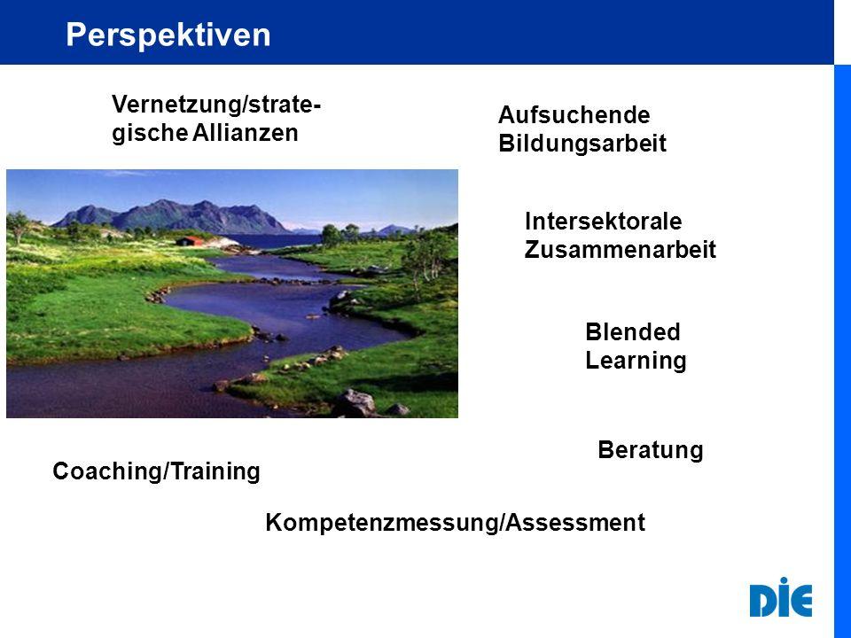 Perspektiven Vernetzung/strate- gische Allianzen Intersektorale Zusammenarbeit Blended Learning Beratung Coaching/Training Kompetenzmessung/Assessment Aufsuchende Bildungsarbeit