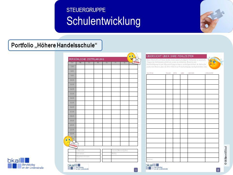 20 STEUERGRUPPE Schulentwicklung STEUERGRUPPE Schulentwicklung Portfolio Höhere Handelsschule © Willwert/Blaut
