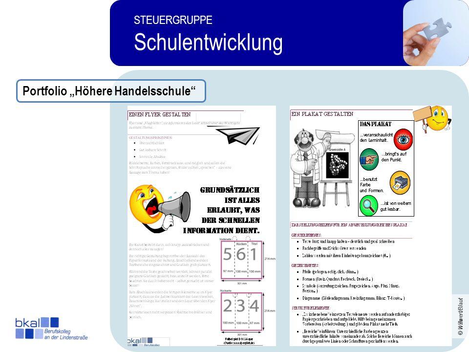 23 STEUERGRUPPE Schulentwicklung STEUERGRUPPE Schulentwicklung Portfolio Höhere Handelsschule © Willwert/Blaut