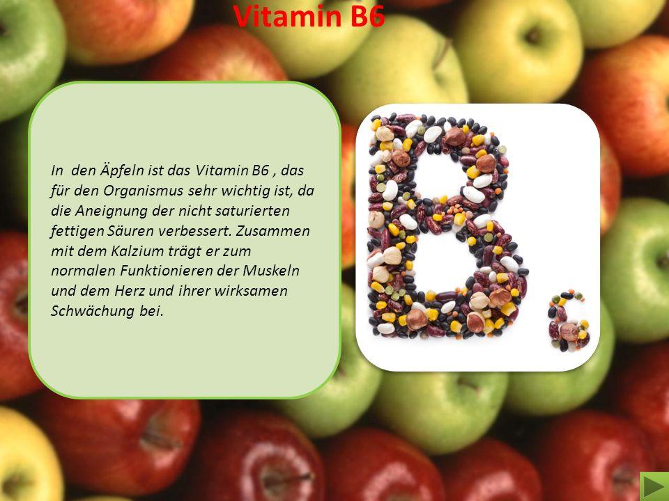 Vitamin B6 In den Äpfeln ist das Vitamin В6, das für den Organismus sehr wichtig ist, da die Aneignung der nicht saturierten fettigen Säuren verbesser