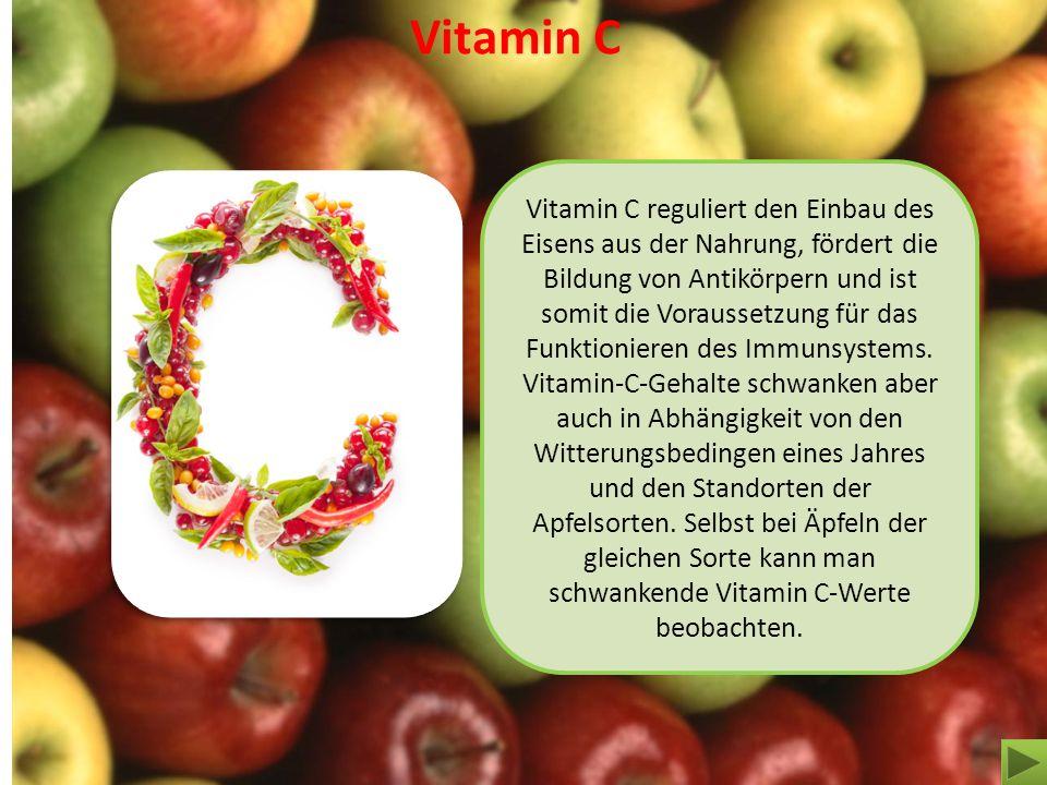 Vitamin C Vitamin C reguliert den Einbau des Eisens aus der Nahrung, fördert die Bildung von Antikörpern und ist somit die Voraussetzung für das Funkt