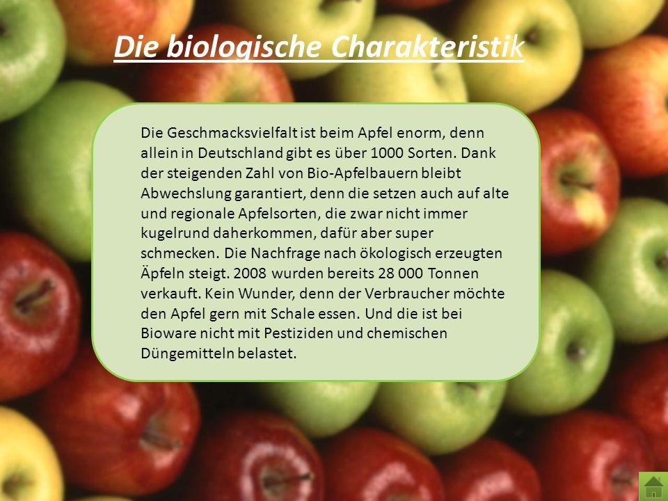 Die biologische Charakteristik Die Geschmacksvielfalt ist beim Apfel enorm, denn allein in Deutschland gibt es über 1000 Sorten. Dank der steigenden Z