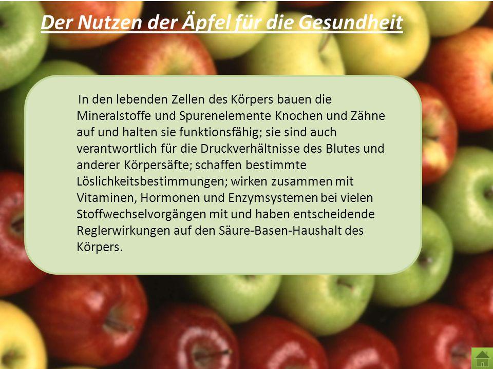 Der Nutzen der Äpfel für die Gesundheit In den lebenden Zellen des Körpers bauen die Mineralstoffe und Spurenelemente Knochen und Zähne auf und halten