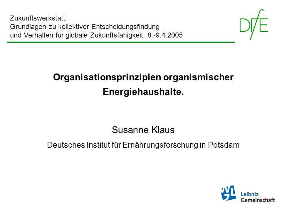 Organisationsprinzipien organismischer Energiehaushalte. Susanne Klaus Deutsches Institut für Ernährungsforschung in Potsdam Zukunftswerkstatt: Grundl