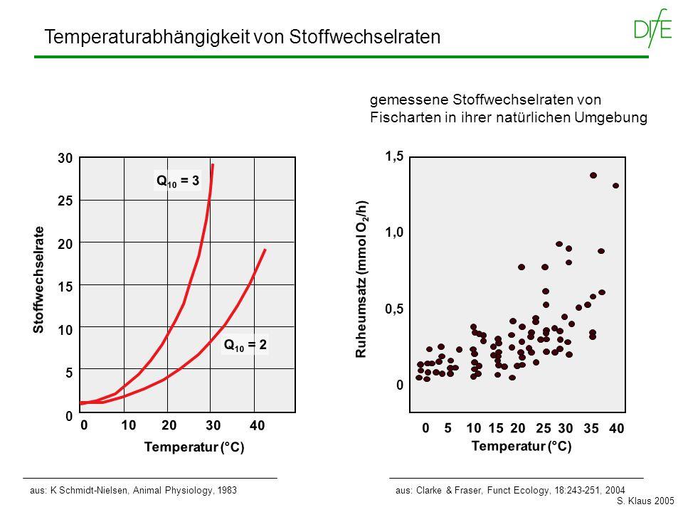 Temperaturabhängigkeit von Stoffwechselraten Q 10 = 3 Q 10 = 2 Temperatur (°C) 0 10 20 30 40 30 25 20 15 10 5 0 Stoffwechselrate aus: K Schmidt-Nielse