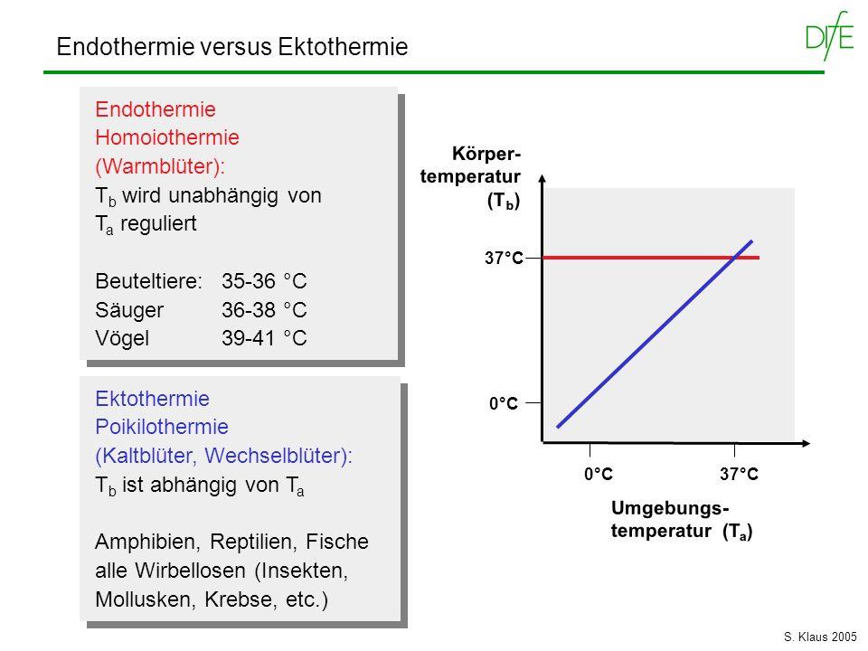 Endothermie versus Ektothermie Endothermie Homoiothermie (Warmblüter): T b wird unabhängig von T a reguliert Beuteltiere: 35-36 °C Säuger 36-38 °C Vög