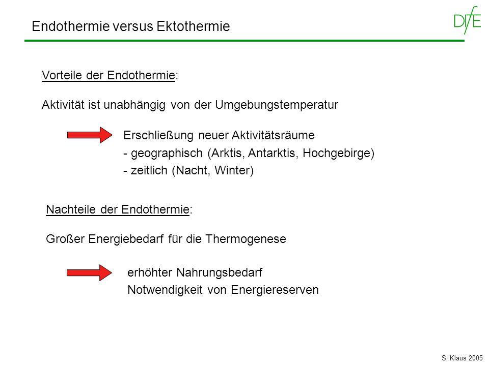 Endothermie versus Ektothermie Vorteile der Endothermie: Aktivität ist unabhängig von der Umgebungstemperatur Erschließung neuer Aktivitätsräume - geo