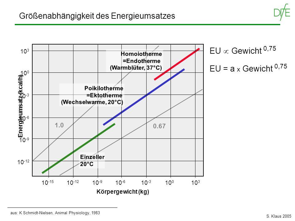 aus: K Schmidt-Nielsen, Animal Physiology, 1983 Energieumsatz (kcal/h) Körpergewicht (kg) 10 -15 10 -6 10 -9 10 -12 10 -3 10 0 10 3 10 -12 10 -3 10 -6