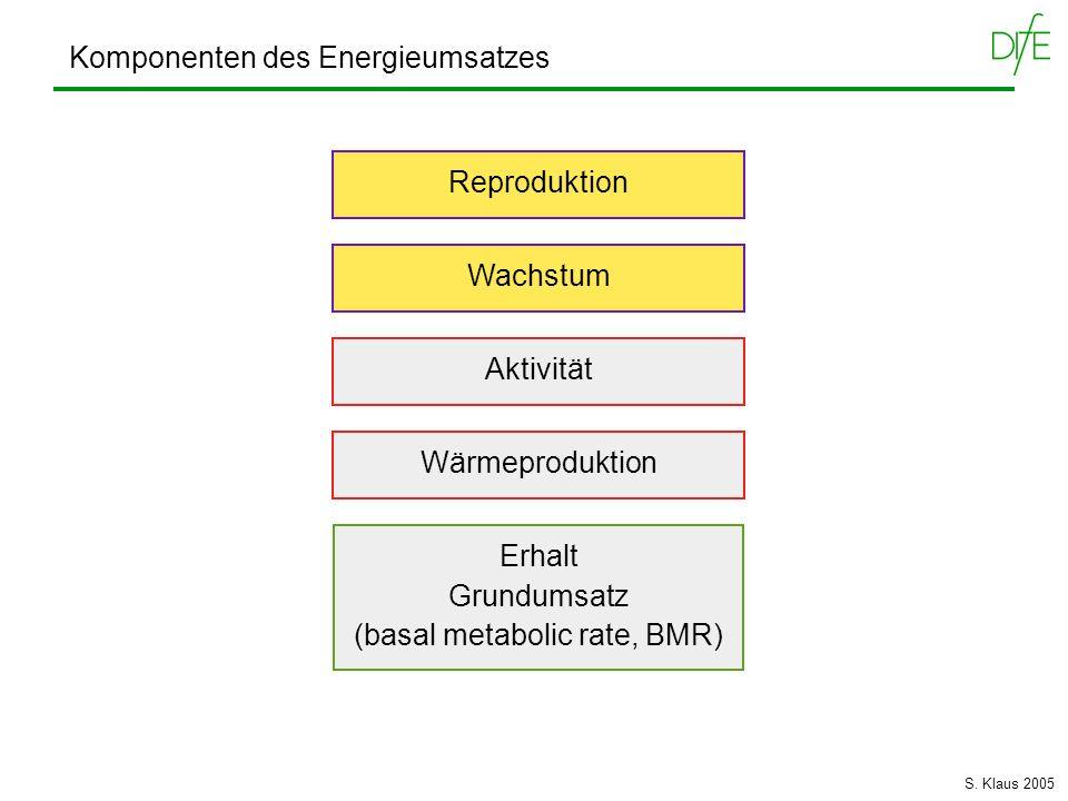 Komponenten des Energieumsatzes Wärmeproduktion Erhalt Grundumsatz (basal metabolic rate, BMR) Aktivität Reproduktion Wachstum S. Klaus 2005