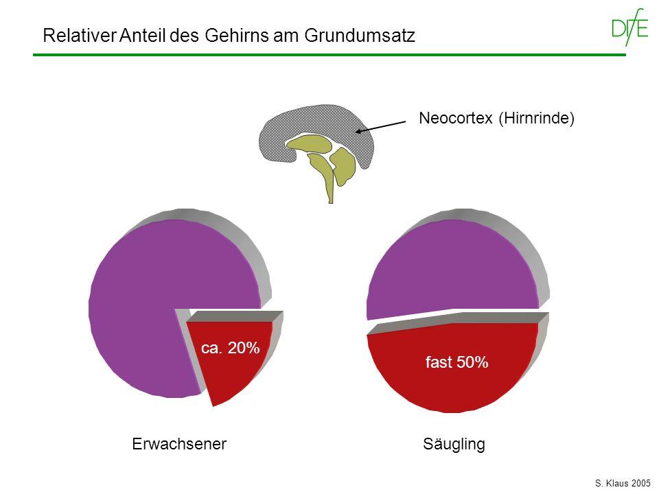 Erwachsener Säugling ca. 20% fast 50% Neocortex (Hirnrinde) Relativer Anteil des Gehirns am Grundumsatz S. Klaus 2005