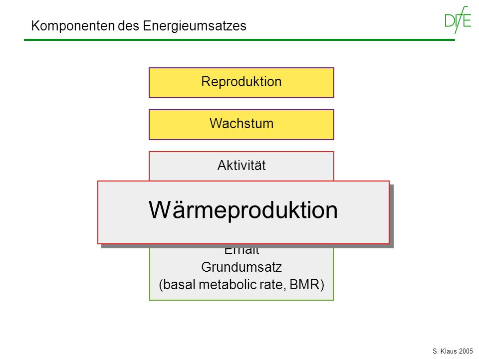 Komponenten des Energieumsatzes Wärmeproduktion Erhalt Grundumsatz (basal metabolic rate, BMR) Aktivität Reproduktion Wachstum Wärmeproduktion S. Klau