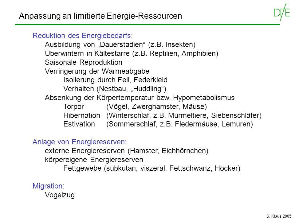 Anpassung an limitierte Energie-Ressourcen Reduktion des Energiebedarfs: Ausbildung von Dauerstadien (z.B. Insekten) Überwintern in Kältestarre (z.B.