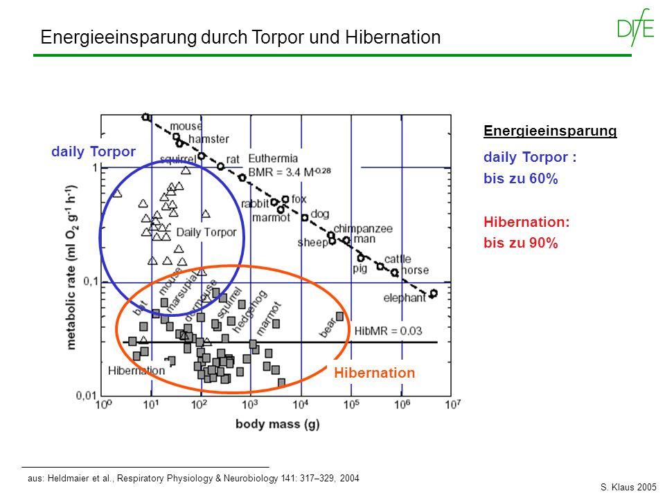 aus: Heldmaier et al., Respiratory Physiology & Neurobiology 141: 317–329, 2004 Energieeinsparung durch Torpor und Hibernation daily Torpor Hibernatio
