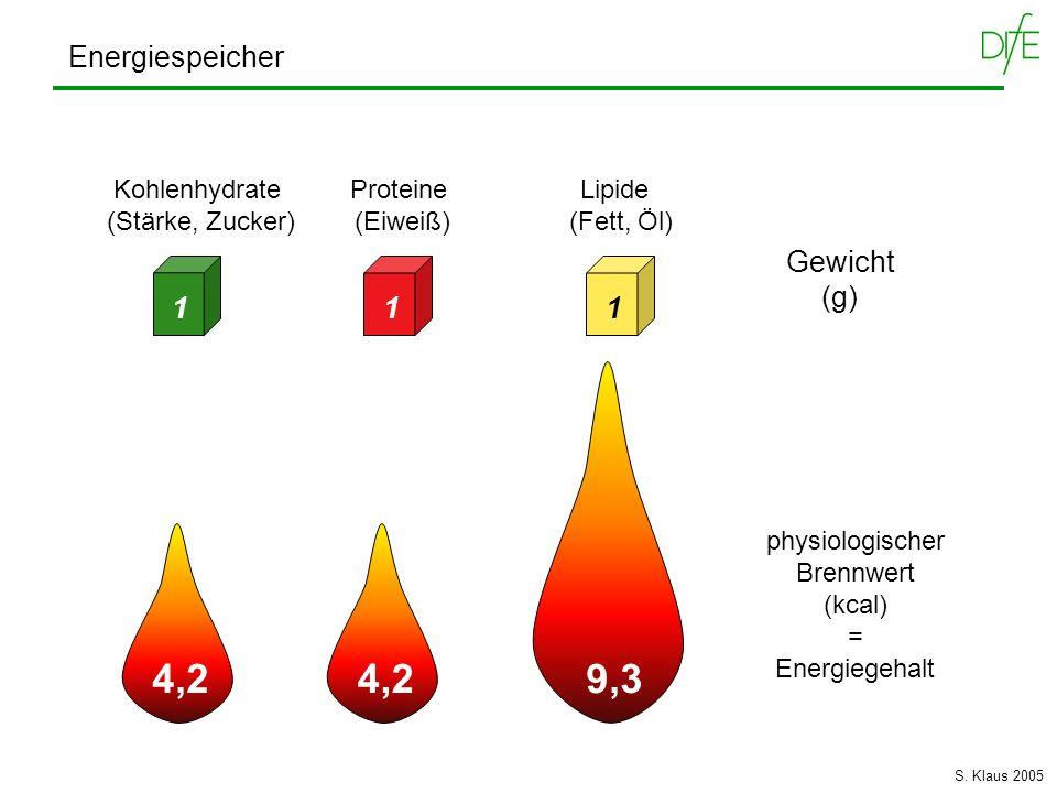 Energiespeicher Gewicht (g) physiologischer Brennwert (kcal) = Energiegehalt Kohlenhydrate Proteine Lipide (Stärke, Zucker) (Eiweiß) (Fett, Öl) 111 4,