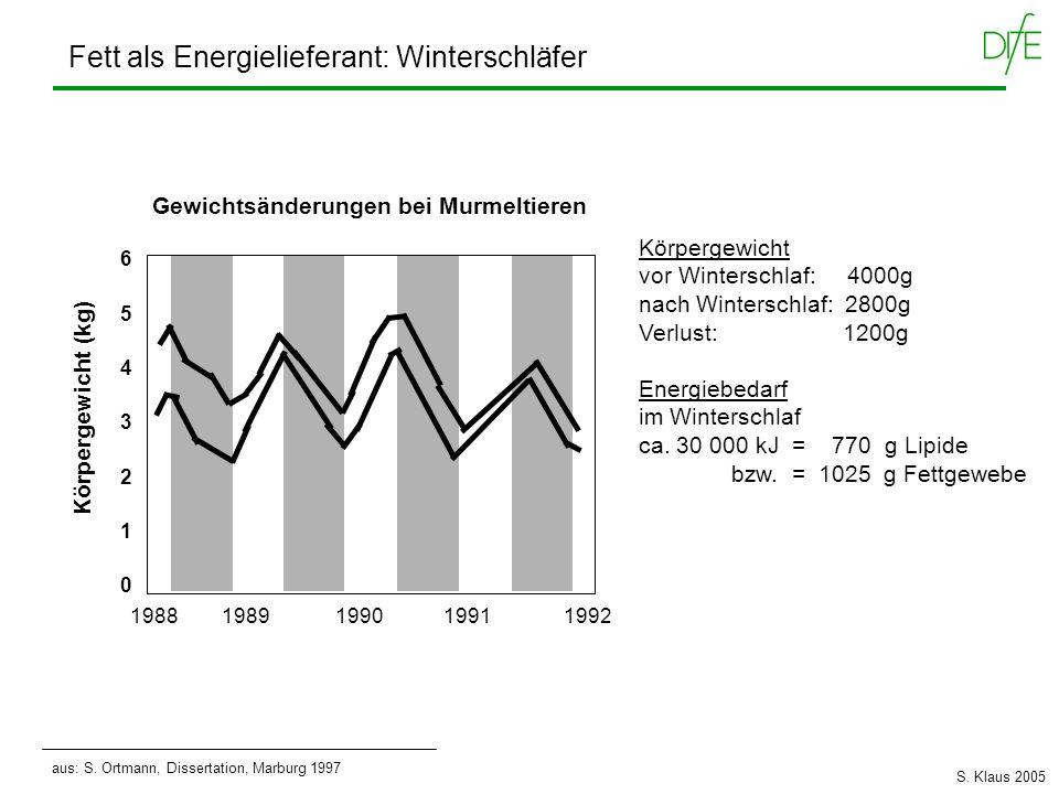 Körpergewicht vor Winterschlaf: 4000g nach Winterschlaf: 2800g Verlust: 1200g Energiebedarf im Winterschlaf ca. 30 000 kJ = 770 g Lipide bzw. = 1025 g