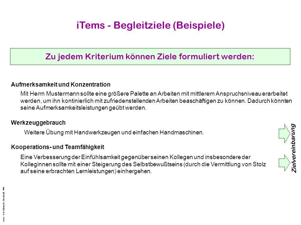iTems - Begleitziele (Beispiele) Zu jedem Kriterium können Ziele formuliert werden: Aufmerksamkeit und Konzentration Mit Herrn Mustermann sollte eine größere Palette an Arbeiten mit mittlerem Anspruchsniveau erarbeitet werden, um ihn kontinierlich mit zufriedenstellenden Arbeiten beaschäftigen zu können.