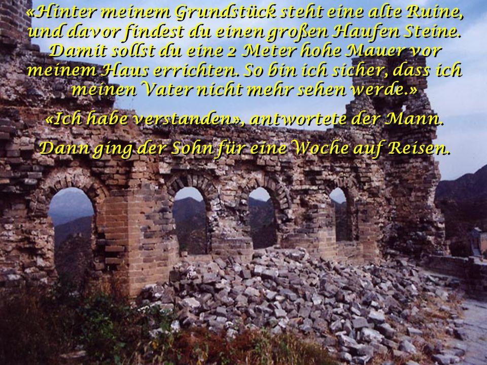 «Hinter meinem Grundstück steht eine alte Ruine, und davor findest du einen großen Haufen Steine.