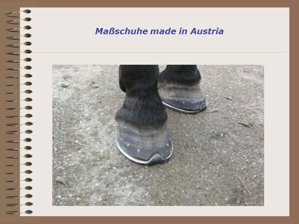 Maßschuhe made in Austria