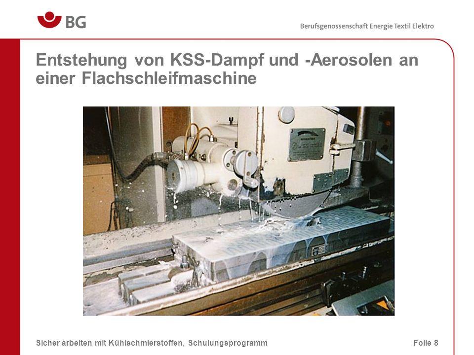 Entstehung von KSS-Dampf und -Aerosolen beim Automaten-Stanzen 08.03.2014Sicher arbeiten mit Kühlschmierstoffen, SchulungsprogrammFolie 9