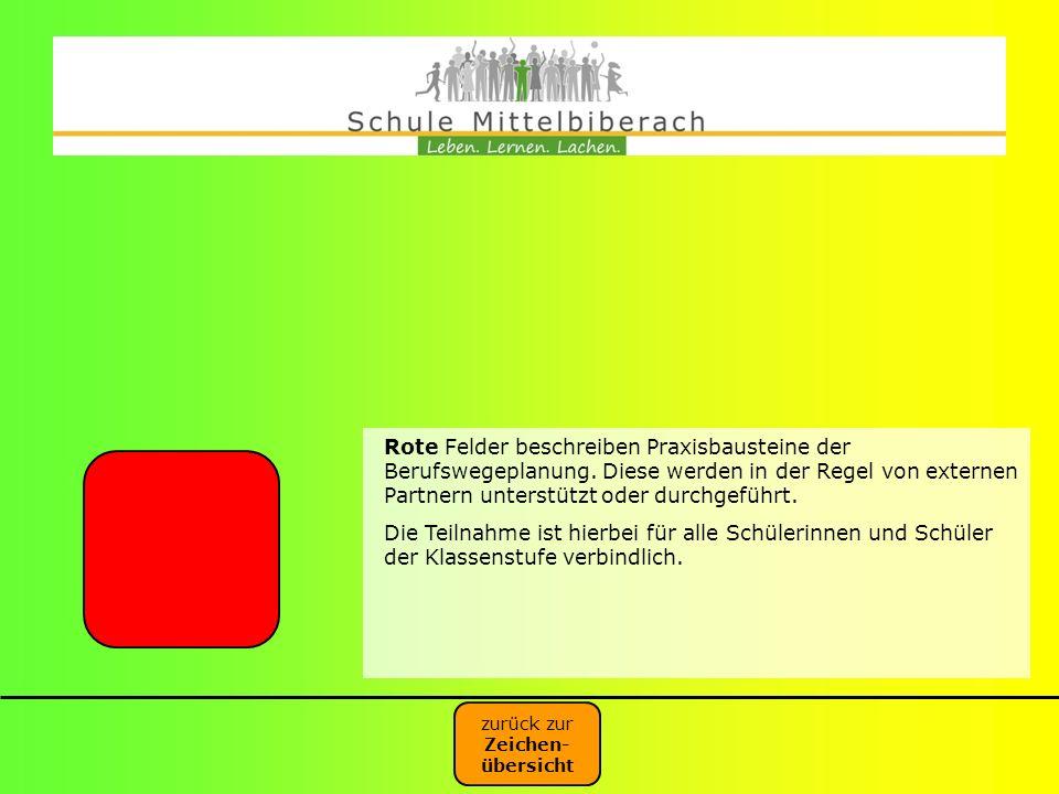 Rote Felder beschreiben Praxisbausteine der Berufswegeplanung. Diese werden in der Regel von externen Partnern unterstützt oder durchgeführt. Die Teil