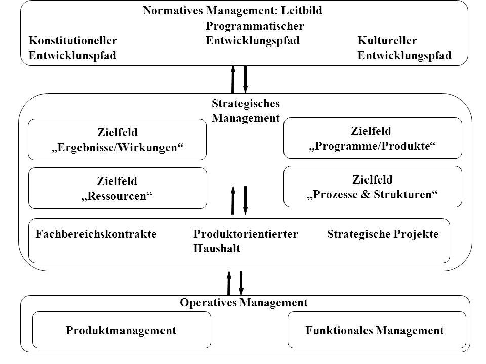 Programmatischer KonstitutionellerEntwicklungspfadKultureller EntwicklunspfadEntwicklungspfad Normatives Management: Leitbild Strategisches Management