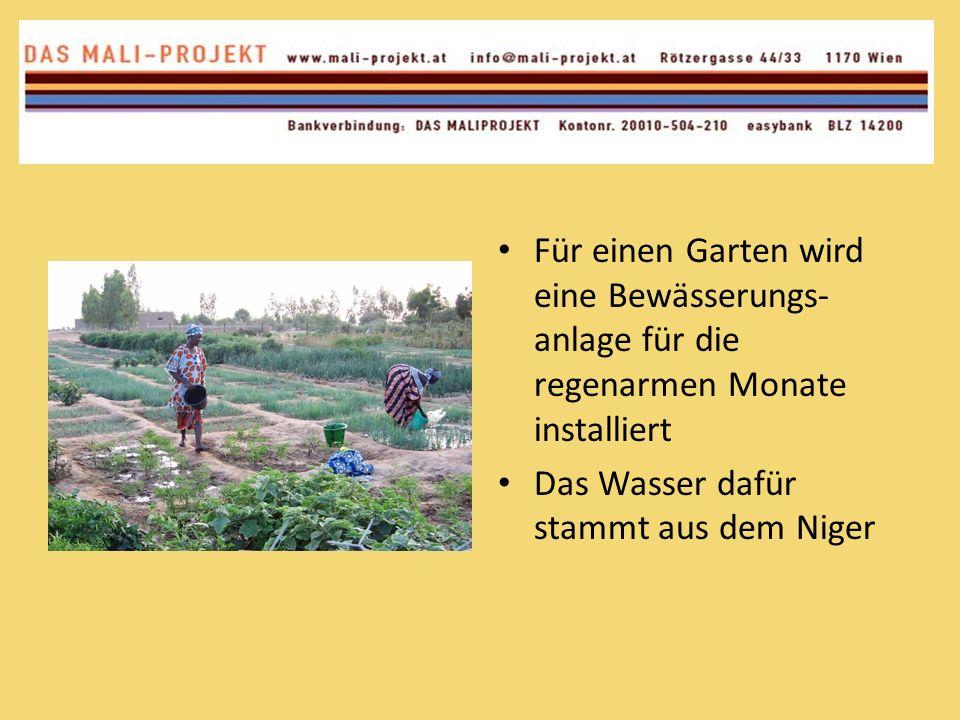 Für einen Garten wird eine Bewässerungs- anlage für die regenarmen Monate installiert Das Wasser dafür stammt aus dem Niger