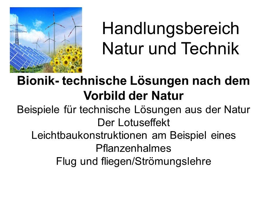 Handlungsbereich Natur und Technik Bionik- technische Lösungen nach dem Vorbild der Natur Beispiele für technische Lösungen aus der Natur Der Lotuseff