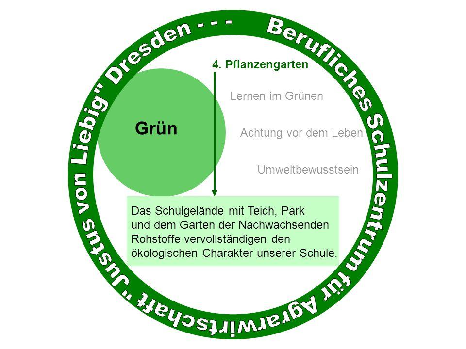 Grün Achtung vor dem Leben Umweltbewusstsein 4.