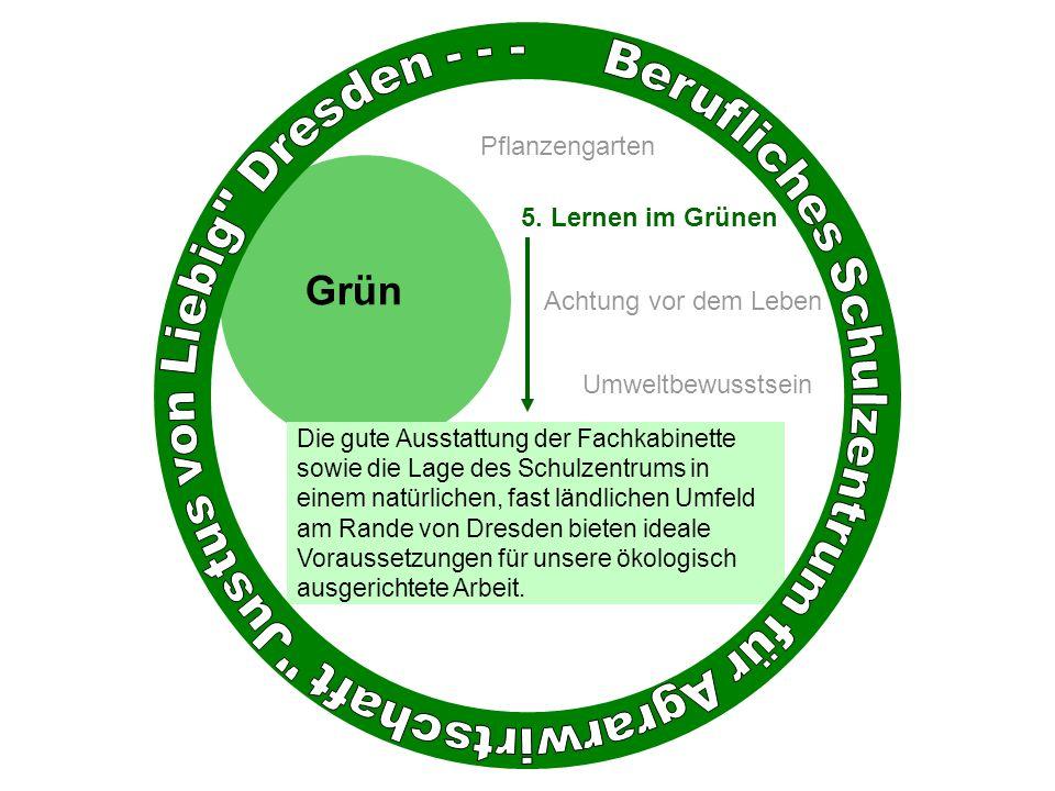 Die gute Ausstattung der Fachkabinette sowie die Lage des Schulzentrums in einem natürlichen, fast ländlichen Umfeld am Rande von Dresden bieten ideale Voraussetzungen für unsere ökologisch ausgerichtete Arbeit.