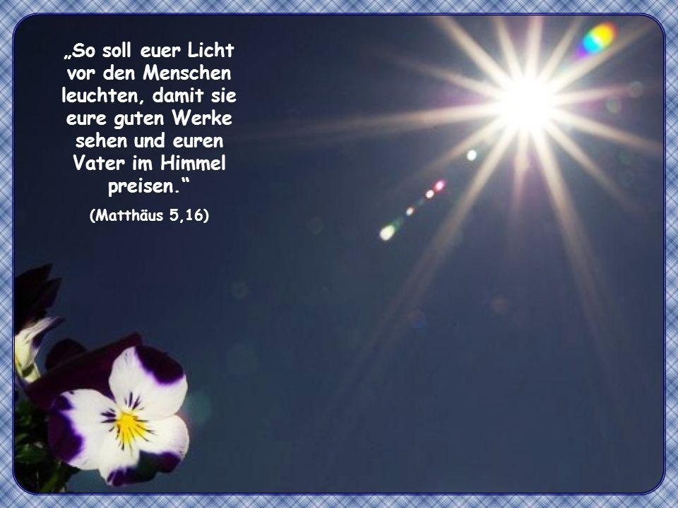 So soll euer Licht vor den Menschen leuchten, damit sie eure guten Werke sehen und euren Vater im Himmel preisen.