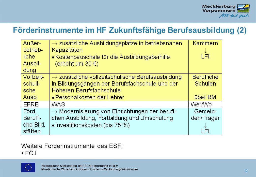 Strategische Ausrichtung der EU-Strukturfonds in M-V Ministerium für Wirtschaft, Arbeit und Tourismus Mecklenburg-Vorpommern 12 Förderinstrumente im H