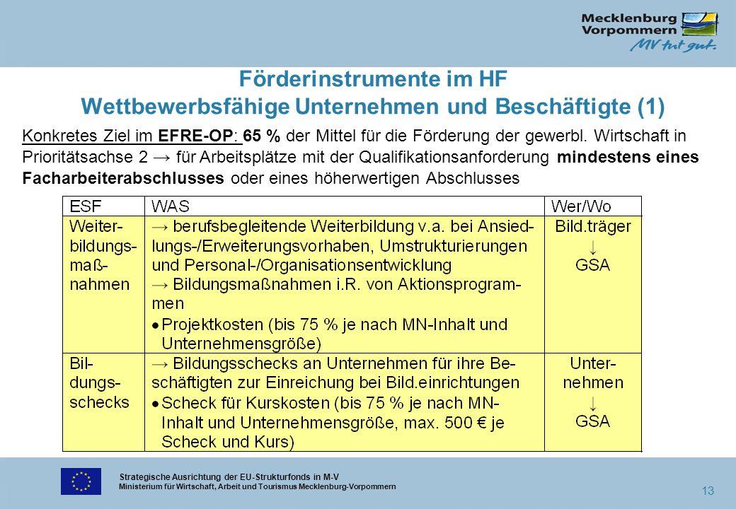 Strategische Ausrichtung der EU-Strukturfonds in M-V Ministerium für Wirtschaft, Arbeit und Tourismus Mecklenburg-Vorpommern 13 Förderinstrumente im H